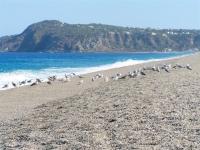 foto-spiaggia